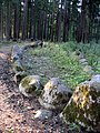 Lubes pag., Talsu raj. ancient scandinavian burrial grounds - panoramio.jpg