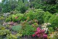 Lviv Botanical Garden LNU RB.jpg