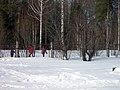 Lyovintsy, Kirovskaya oblast', Russia, 612079 - panoramio (141).jpg