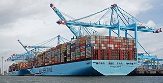 Container ship Type of cargo ship