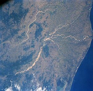 Mahanadi - The Mahanadi River Delta at False Point.