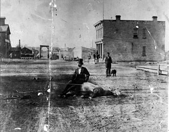 Flogging a dead horse - A man sitting on a dead horse in Sheboygan, Wisconsin. Flogging this horse would not cause it to move or anything otherwise worthwhile to happen, and that is the substance of this phrase.