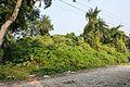 Manasa Mound - South-western View - Manasapota - Simurali 2016-12-18 2158.JPG
