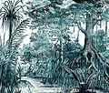 Mangrovebomen en nipapalmen op Java.jpg