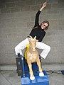 MaryRoach horse.JPG