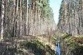 Meža takas, Babītes pagasts, Babītes novads, Latvia - panoramio.jpg