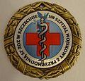 Medal Pamiątkowy 109 Szpitala Wojskowego.jpg