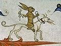 Medieval rabbits (7).jpg