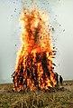 Meji burning in Kamrup, Assam.jpg