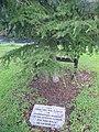 Memorial in Newbridge.jpg