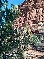 Mescal Trail, Sedona, Arizona - panoramio (5).jpg