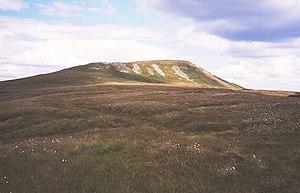 Mickle Fell - Western side of Mickle Fell