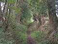 Middle Lane Bridleway - geograph.org.uk - 259811.jpg