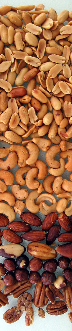 Mixed nuts column