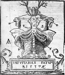 Medieval medicine of Western Europe - Wikipedia