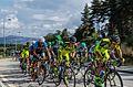 Montalegre Volta Ciclista a Portugal 2015 (20220640112).jpg
