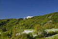 Monte Lesima - panoramio (2).jpg