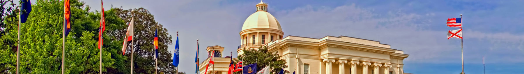 Montgomery banner Capitol.jpg