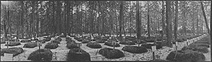 Deadliest single days of World War I - Moscow City Brotherly Cemetery in 1915
