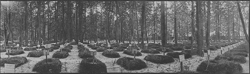 Moscow City Brotherly Cemetery 1915.jpg