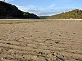 Mothecombe beach and Erme Estuary.jpg