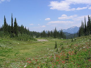 Mount Revelstoke National Park national park of Canada in British Columbia