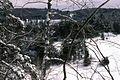 Muskoka Woods, Rosseau, Ontario in Winter - panoramio - A J Butler (5).jpg
