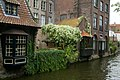 Muurbegroeiing te Brugge - 369410 - onroerenderfgoed.jpg