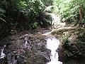 Nationak park Panom Bencha - Národní park Panom Bencha - panoramio - Thajsko (4).jpg