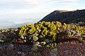 Near the pinnacle of Mount Wellington Tasmania ad.jpg