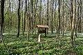 Nekhvoroshcha Volodymyr-Volynskyi Volynska-Nekhvoroshschi nature reserve-feeder for animals.jpg