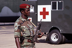 Niger soldier-89-07307.JPEG