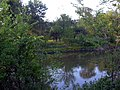 Nisava - panoramio - tromi (4).jpg