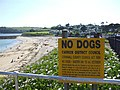 No dogs^ - geograph.org.uk - 462690.jpg