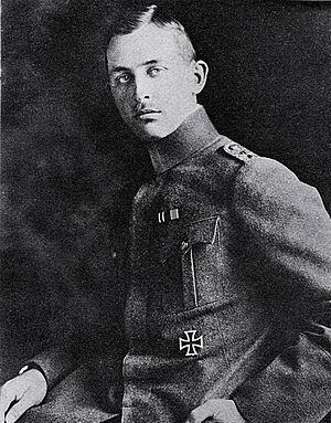 Friedrich T. Noltenius - Jagdflieger Friedrich Noltenius