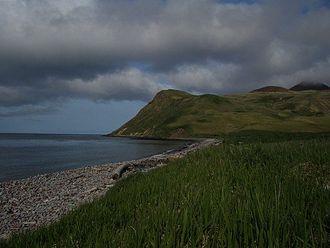 Buldir Island - North Bight Beach, Buldir Island