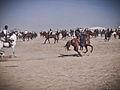 Nowruz Buzkashi Match in Mazar (5778803430).jpg