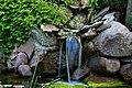 Oczko wodne w ogrodzie - panoramio.jpg