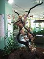 Oecophylla smaragdinaBerlinAquarium.jpg