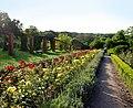 Ogrod wloski w parku ostromeckim.JPG