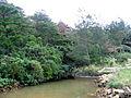 OkinawaOnna2.jpg