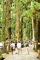 Okuno-in cemetery, Koyasan (3811048804).jpg