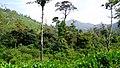 On the way to Akkalamai - panoramio (2).jpg