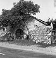 Opuščena Škrateljnova hiša v Divači 1969 (10).jpg
