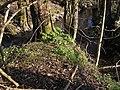 Ottersbach-Halfterbach.jpg