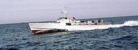 Wild swan speedboat