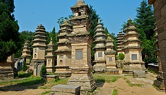 Zhengzhou - Pagoda Forest at Shaolin Temple (Historical site)