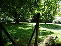 Paignton , Paignton Zoo Enclosure - geograph.org.uk - 1484721.jpg