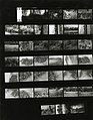Paolo Monti - Serie fotografica (Anzola d'Ossola, 1974) - BEIC 6335096.jpg