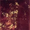 Paolo Monti - Serie fotografica - BEIC 6362320.jpg